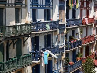 Hondarribi 102A Apartment by FeelFree Rentals