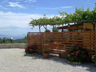 House Lana in Gondolici, Labin, Istria, Croata