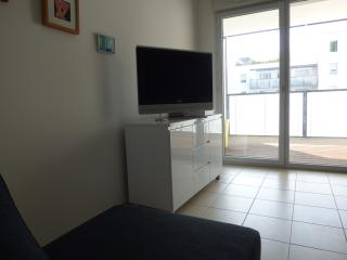 appartement (5personnes max) limitrophe Lyon