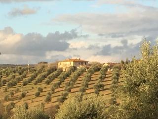 """""""CASALINO"""" Relax in Chianti con vasca idromassaggio e piscina, Castelnuovo Berardenga"""