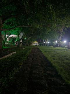 Night view of the garden & lake.