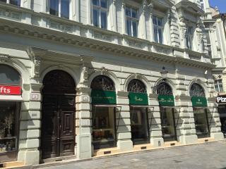 Central pedestrian zone - historic loft