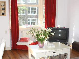Spacious, warm apartment, Amsterdam