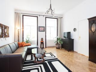 NEWLY Renovated Central LUXURY Apartment, Vienna