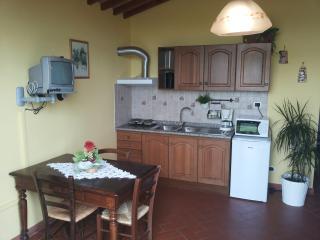 Farmhouse near Florence and Pisa, Cerreto Guidi