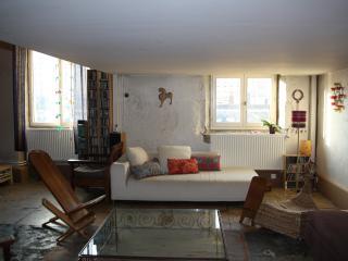 Appartement T6 vec vue sur Saône, Lyon