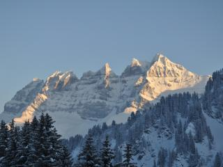 Chalet-like appt on slopes, view on Dents du Midi, Les Crosets