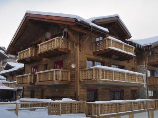 Chalet-like appt on slopes, view on Dents du Midi