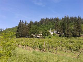 Agriturismo Lucciano (Noce), San Casciano in Val di Pesa
