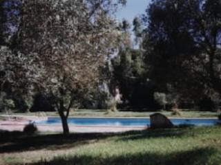 Affitto villa immersa nel verde con piscina, Iglesias
