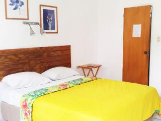 Bananaquit  Cosy Studios near the beach