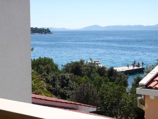 Anita Punta Skala Petrcane Zadar apartment near the sea with sea view