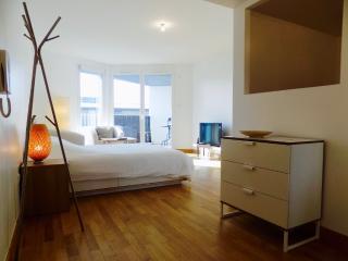 Appartement avec terrasse et parking, Issy-les-Moulineaux