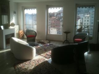 charmant appartement sur la Saone au coeur de Lyon