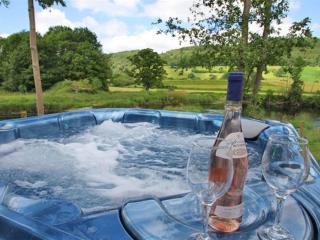 Flyfishers Cottage: Gorgeous three bedroom holiday cottage near Snowdonia FL021