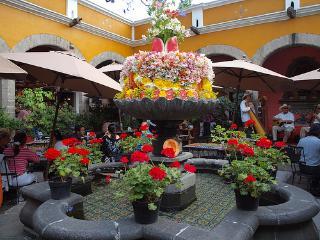 Estudio en corazón de San Ángel en Ciudad Mexico