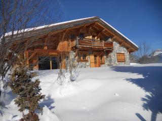 Chalet vue Mont-Blanc (8 personnes)