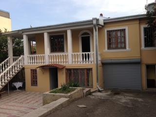 beautiful house with garden, Tbilisi