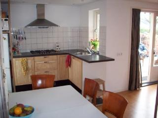 Open kitchen with dishwasher, refrigerator, combi microwave, stove and hood.
