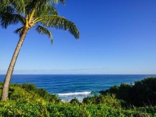 Freshly remodeled, Breathtaking Ocean Views in Princeville