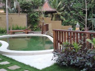 2 Bedrooms Villa Ubud with Pool Near Monkey Forest
