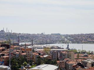 CITY CENTER APARTMENT WITH SEA VIEW ROOF TERRACE, Istanbul