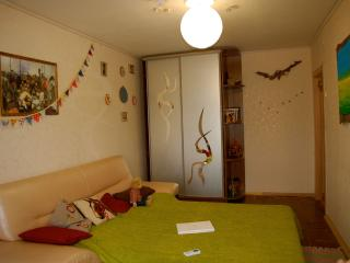 1 bedroom apartment on the woodland, Kiev