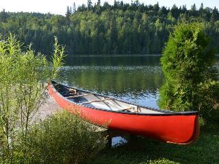 Chalet Canada Québec forêt et lac