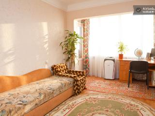 nice central fully equipped cheap apartment, Kiew