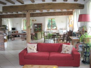 40 km from Paris, lovely house in the countryside