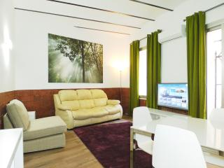 New comfortable apartment, Barcelona