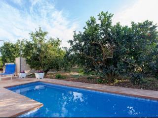 Pequeña casa de campo con piscina, Muro