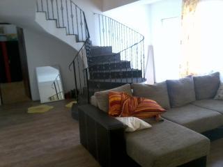 friendly house in a quiet zone, Timisoara