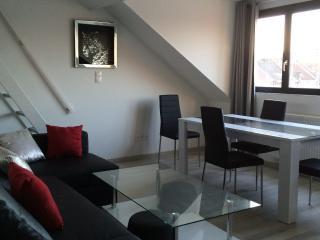 centre ville,  pour 4 a 6 personnnes, 2 chambres, Lille
