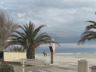 Canet en Rousillon: T2  100 metres plage