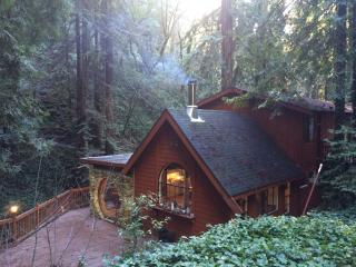 Secluded Upscale Creekside Cabin in the Redwoods, Napa