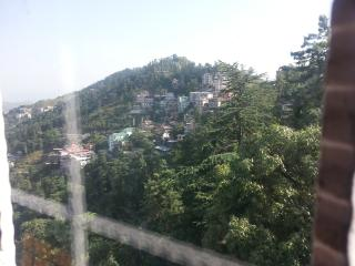 Luxurious apartment in the Queen of Hills-Shimla