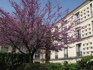 Appartement 5mn à pied du centre historique, Aix-en-Provence