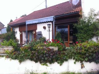 jolie maison dans le Parc des VOLCANS d' AUVERGNE