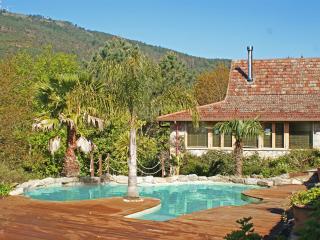 Spacious pool & deck area