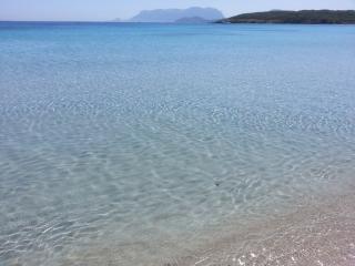 Villa Fronte Mare, nel cuore del Verde!!, San Teodoro