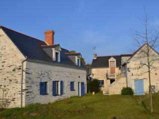 Charmant Gîte typique des Bords de Loire, La Dagueniere
