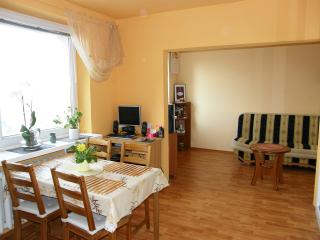 whole apartment near to the centre - Poznan