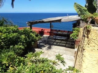 Finca Babylon, Santa Cruz de Tenerife