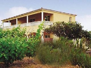 Finca St. Barbara with 1 bedroom and a terrace, Icod de los Vinos