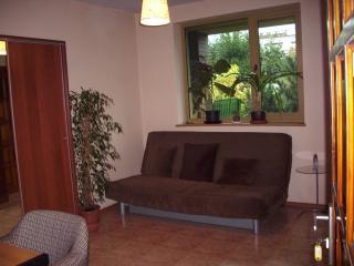 Einzimmerwohnung, Poznan