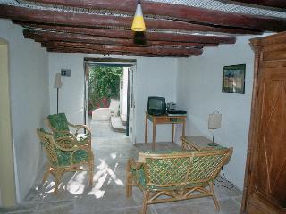 The Garden Studio
