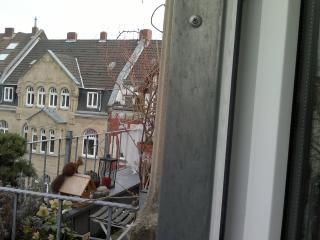 Nippeser Dächer, Köln