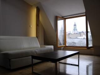 Apartments in city centre-LOOK DISCOUNT!!! 1, Poznan