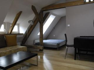 Apartments in city centre-LOOK DISCOUNT!!! 2, Poznan